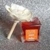 Fleur Parfumé Désodorisant d'Intérieur - Mangue - PRADY